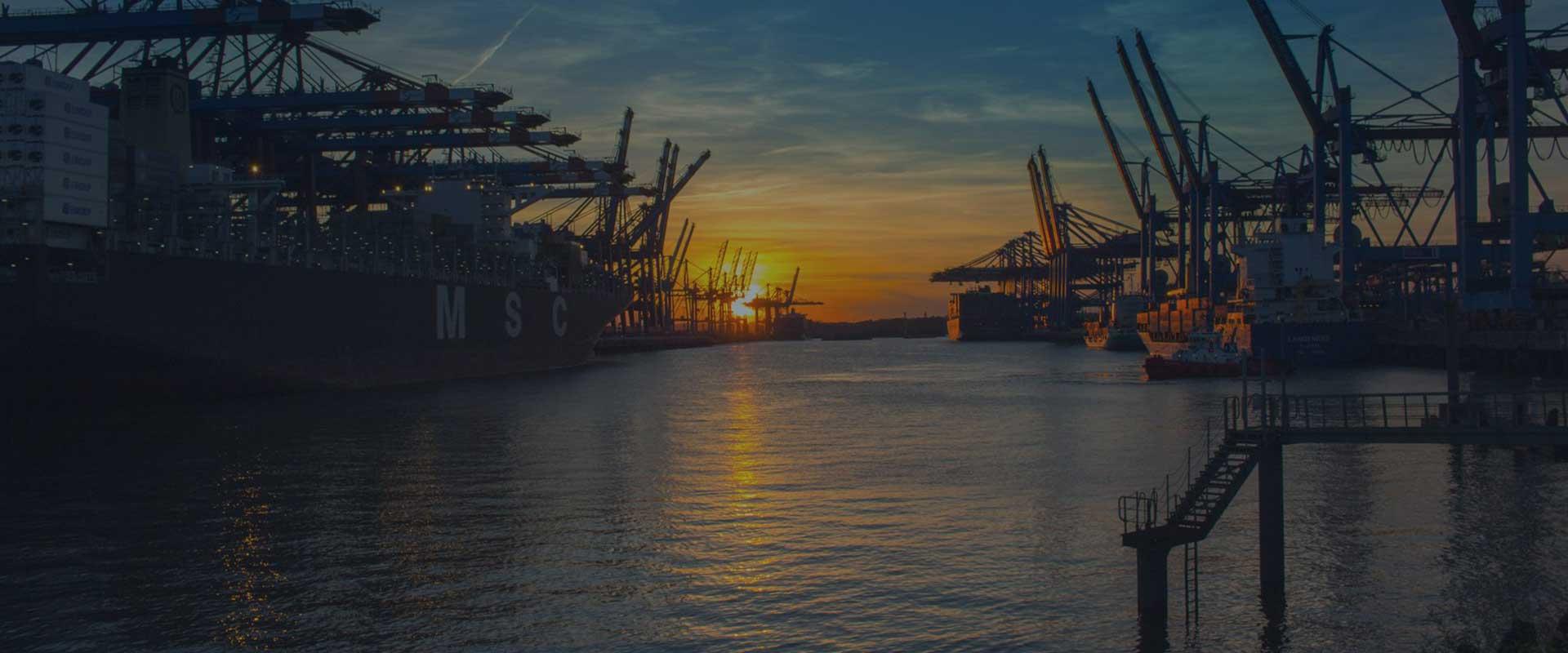Sea Export Pedraza Customhouse Brokers logo