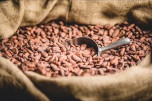 imported coffee beans - reconsilication process Pedraza Customs Freight Broker