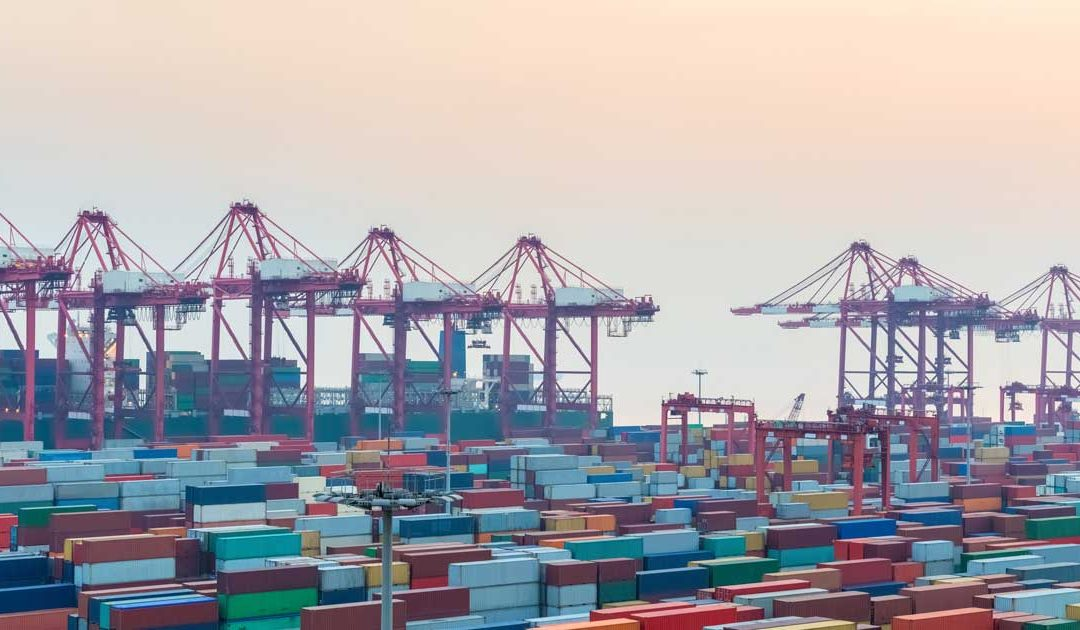What Role Does FTZ Warehousing Play in Exporting and Importing